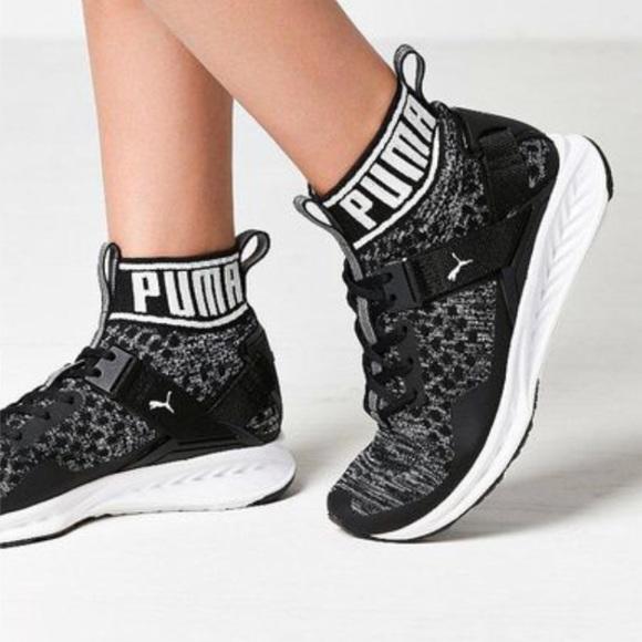 Shoes - Puma IGNITE evoKNIT Women's Training Shoes
